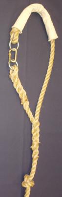 Loop Shroud